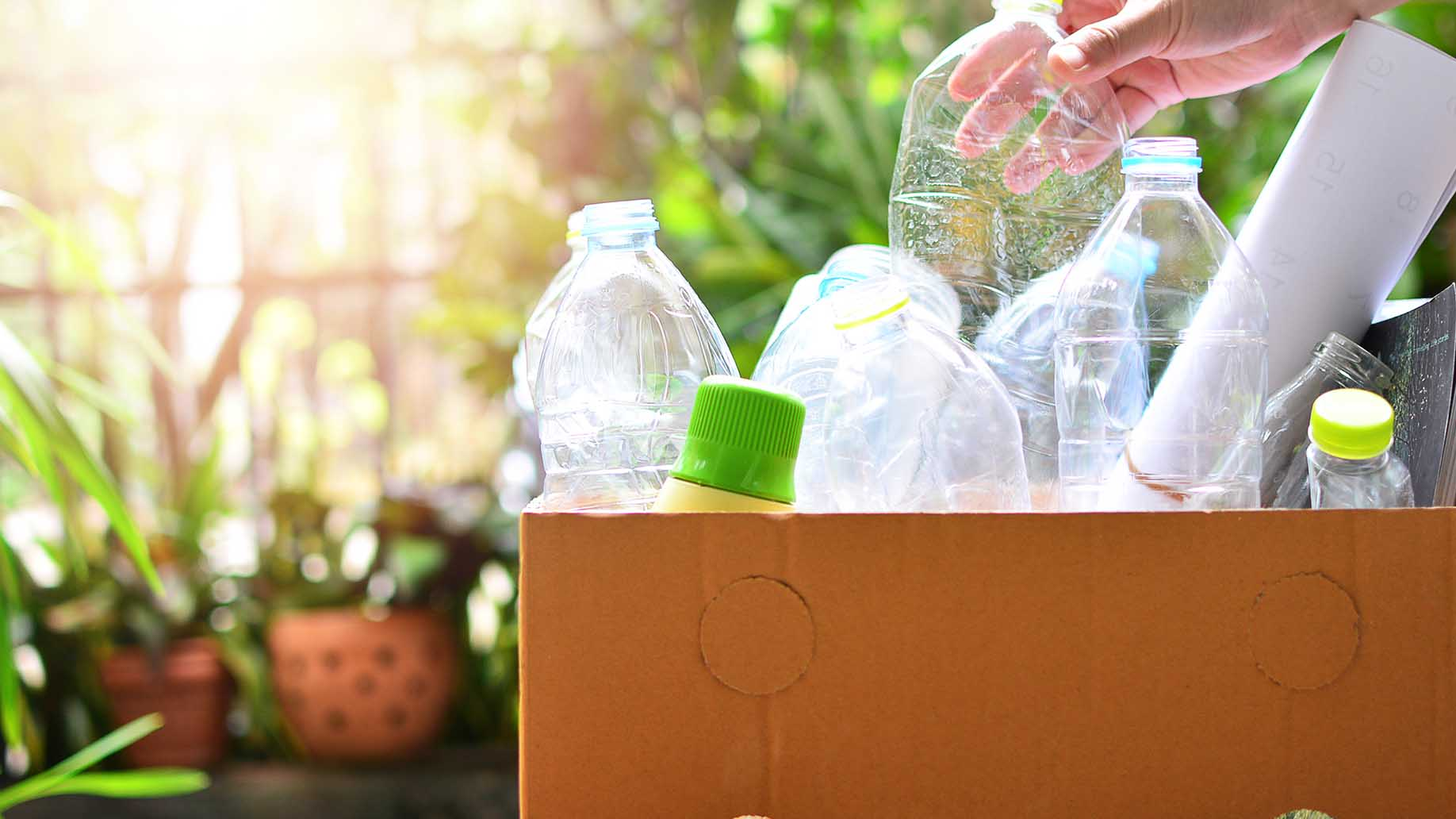 recycling and proper waste management