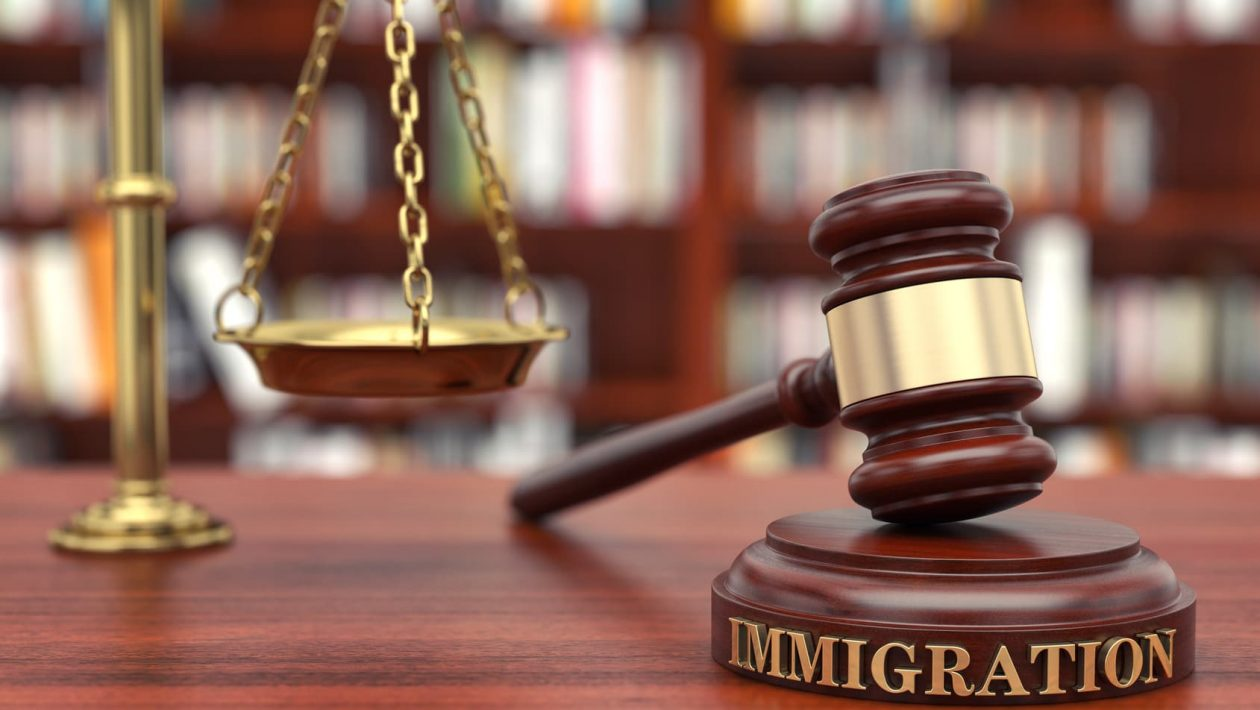 support of immigration lawyer